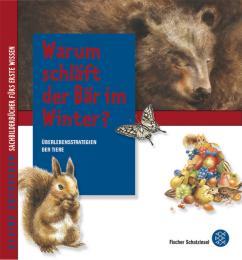 Warum schläft der Bär im Winter?