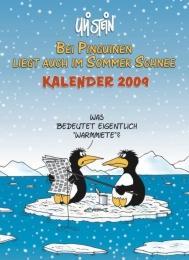 Bei Pinguinen liegt auch im Sommer Schnee