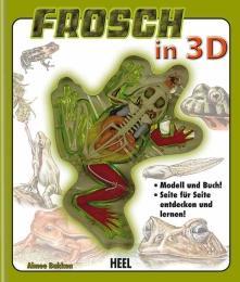 Frosch in 3D