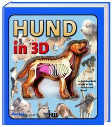 Hund in 3D