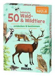 50 heimische Wald- & Wildtiere entdecken & bestimmen