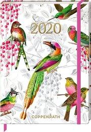 Mein Jahr - Bunte Vögel 2020 - Cover