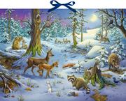 Hört ihr die Tiere im Winterwald?