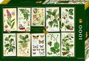 Boxpuzzle Sammlung Augustina (1000 Teile)