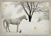 Pferd in Schneelandschaft