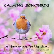 Calming Songbirds: Nature Sounds Recording Of Bird Calls - A songbird concert for Meditation, Relaxation and Creating a Soothing Atmosphere
