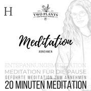 Meditation Abnehmen - Meditation H - 20 Minuten Meditation