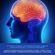Battements binauraux <pipe> Entraînement des ondes cérébrales <pipe> Relaxation profonde <pipe> Le lien avec le subconscient