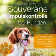 Souveräne Impulskontrolle bei Hunden