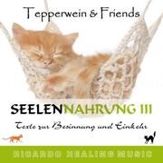 Seelennahrung 3: Texte zur Besinnung und Einkehr (Tepperwein and Friends)