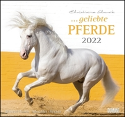 ... geliebte Pferde 2022