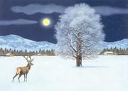 Zauberhafte Winternacht Adventskalender