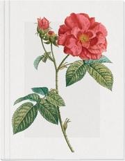 Geschichte der Rose Großes Notizheft (A5) Motiv Französische Rose