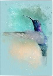 Vögel auf Instagram Klappkarte Motiv Blauer Annakolibri