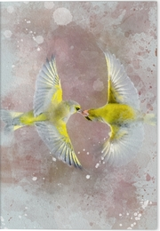 Vögel auf Instagram Klappkarte Motiv Grünfink