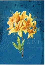 Gärten der Künstler Klappkarte Motiv Gelbe Orchidee