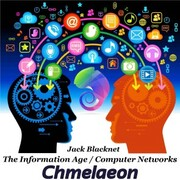 The Information Age - Computer Networks
