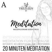 Waldspaziergang gegen Stress - Meditation A - 20 Minuten Meditation