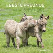 Beste Freunde 2022 - Broschürenkalender 30x30 cm (30x60 geöffnet) - Kalender mit Platz für Notizen - Best Friends - Bildkalender - Wandkalender
