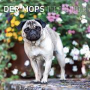 Der Mops 2022 - Broschürenkalender 30x30 cm (30x60 geöffnet) - Kalender mit Platz für Notizen - Pug Dog - Bildkalender - Wandkalender - Hundekalender