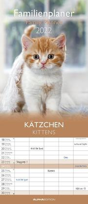 Kätzchen 2022