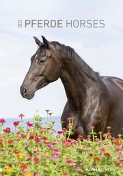 Pferde 2022