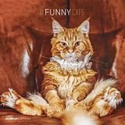 Funny Cats 2022