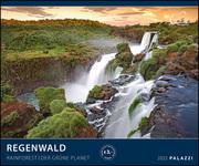 Regenwald 2022
