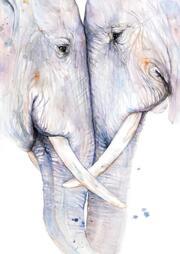 Postkarten Elefanten
