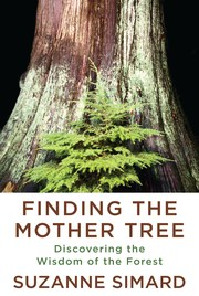 Finding the Mother Tree - Cover