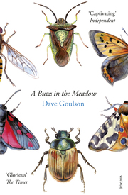 A Buzz in the Meadow - Cover