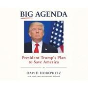 Big Agenda - President Trump's Plan to Save America (Unabridged)