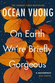 On Earth We're Briefly Gorgeous - Cover