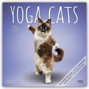 Yoga Cats - Yoga-Katzen 2022