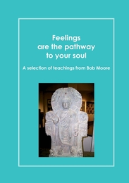 Feelings are the pathway to your soul