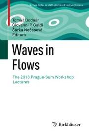 Waves in Flows