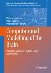 Computational Modelling of the Brain