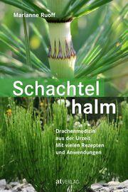 Schachtelhalm - Cover