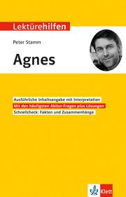 Lektürehilfen Peter Stamm 'Agnes'