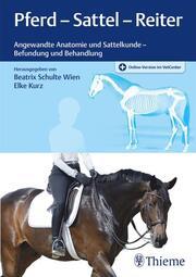 Pferd - Sattel - Reiter