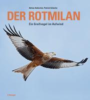 Der Rotmilan