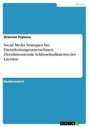 Social Media Strategien bei Dienstleistungsunternehmen. Zweidimensionale Schlüsselindikatoren der Literatur