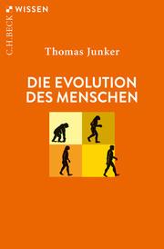 Die Evolution des Menschen