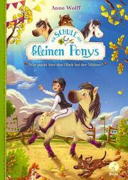 Die Schule der kleinen Ponys - Wer packt hier das Glück bei der Mähne?