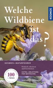 Welche Wildbiene ist das?