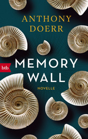 Memory Wall - Cover