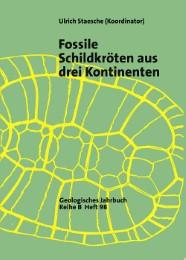 Fossile Schildkröten aus vier Ländern in drei Kontinenten: Deutschland, Türkei, Niger, Philippinen