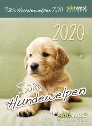 Süße Hundewelpen 2020 - Tagesabreißkalender