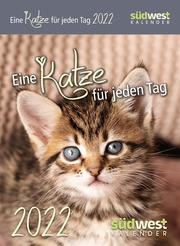 Eine Katze für jeden Tag 2022