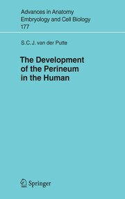The Development of the Perineum in the Human